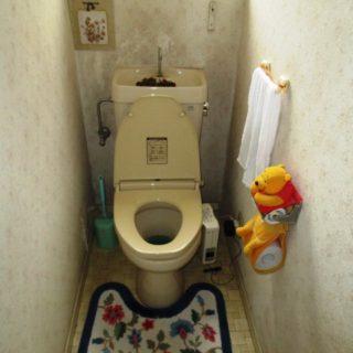 L型手摺と壁内収納のついた機能的なトイレ