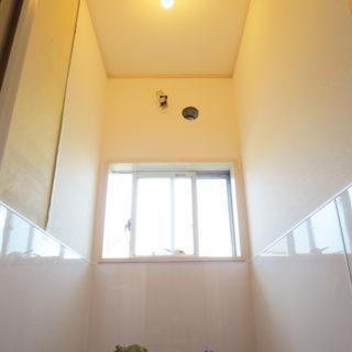 美しく、掃除が楽な壁パネルのトイレ