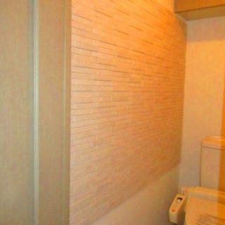消臭効果の高いエコカラットを内装に使用したトイレリフォーム