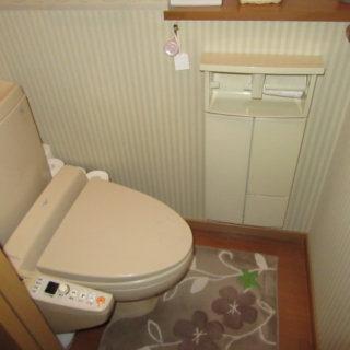 背面収納にタンクと収納が隠れたトイレ