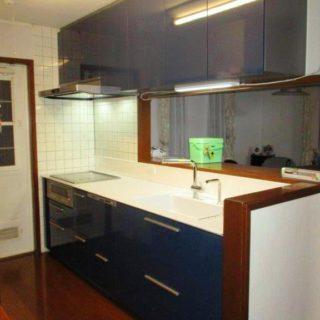 すりガラスのような淡い透明感のあるキッチンカウンター